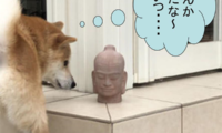 12:お土産にもらった仏像の頭